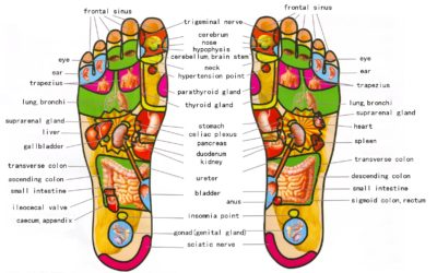 Reflexology- with Jenny Ekstrom